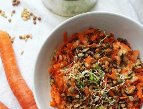 Bento-Box: Linsen-Karotten-Salat