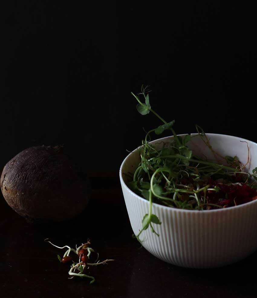 Microgreens-Salat